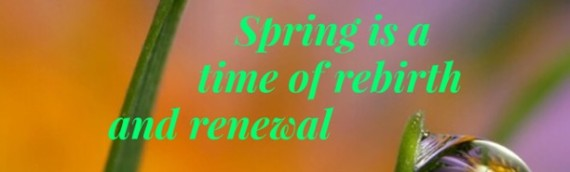 SPRING IS A TIME OF REBIRTH AND RENEWAL